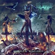 free at 100€+ orders: 666 SHADES OF SHIT - CD - Whoracle of Blasfemales