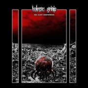 BOLESNO GRINJE - CD - The Last Grinjober