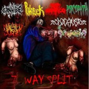 CANNIBE / PRO SEPTICO / PUTREFUCK / PSICOPATIA / MUTILATED JUDGE / SCROTOVARIOS / OLOCAUSTO -SPLIT CD- 7 Way Split