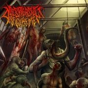 DISPLEASED DISFIGUREMENT - CD - Origin of abhorrence