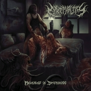 ENZEPHALITIS - CD - Revealed In Sickness