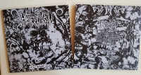 HATEFILLED - 12'' LP - Totally Disfigured Carnage