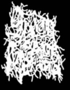 SATAN'S REVENGE ON MANKIND - full Logo - Printed Patch