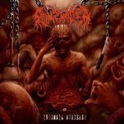 SUPREMACIA - CD - Insomnia Murderer