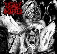 VAGINAL ANOMALIES - CD - Two Maniac Perverts Vomiting Shit And Putrefaction