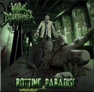 VAGINAL DIARRHOEA -CD- Rotting Paradise