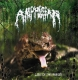 AMPHIBIAN - CD - Lust of the Bufo`s