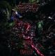 ATRETIC INTESTINE -CD- Trail Of Entrails