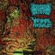 CEREBRAL CRUSHER / VAGINAL ANOMALIES -split CD- Psycho Genital Issues