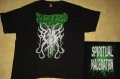DIGESTED FLESH - Majewski Art - T-Shirt XXL (2nd Hand)