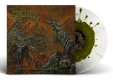 GRACELESS - 12'' LP - Where Vultures Know (White + Green Color in Color Vinyl)