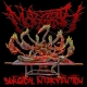 MORGROTH - CD - Surgical Intervention