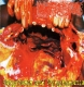 PARACOCCIDIOIDOMICOSISPROCTITISSACOMUCOSIS - CD - Satyriasis And Nymphomania/ PARASITE - split CD