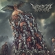 TWITCH OF THE DEATH NERVE - Digipak CD - Beset by False Prophets